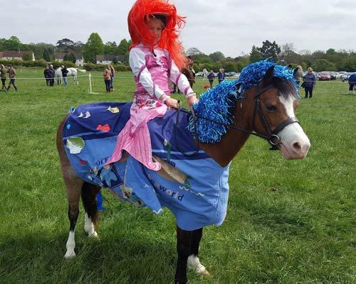 Suffolk Pony Party Bella