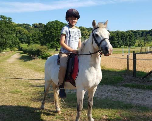 Prince Eric the pony party pony