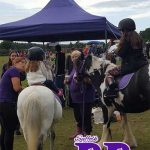 pony rides for school fetes