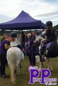 pony rides for school fetes suffolk